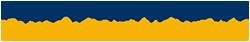 LEADing Practice Logo